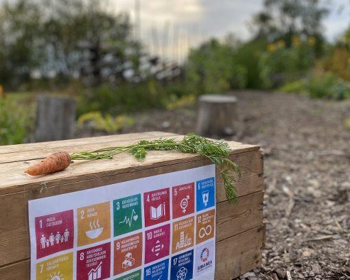 Fullbokat på Hållbarhetsdagarna